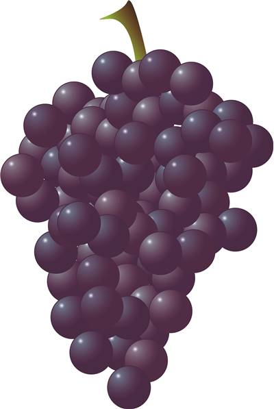 Wine Grape as Ingredient